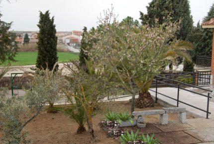 Zona exterior y jardín